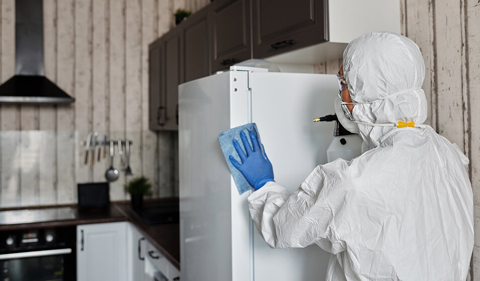 take care of kitchen cleaning